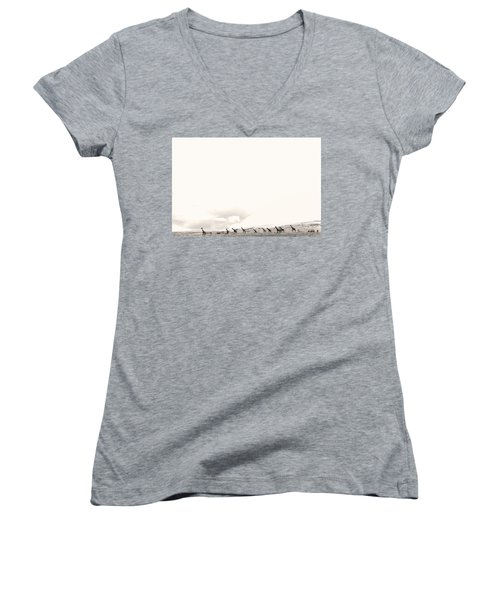 Giraffes Women's V-Neck
