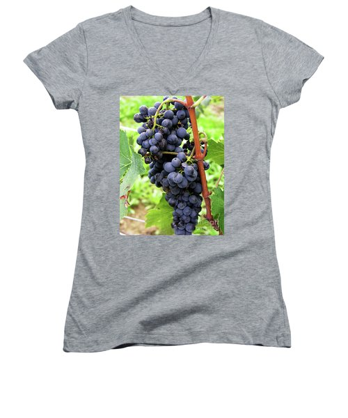 Grapevine Women's V-Neck T-Shirt