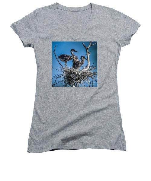 Great Blue Heron On Nest Women's V-Neck T-Shirt