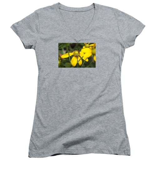 Green Headed Coneflowers Painted Women's V-Neck T-Shirt