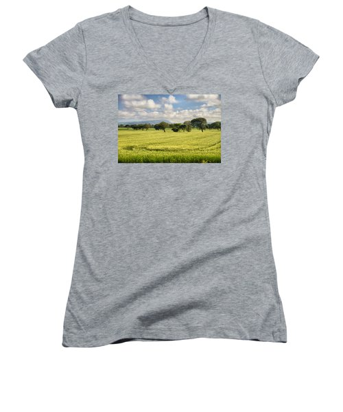 Greenery Women's V-Neck T-Shirt