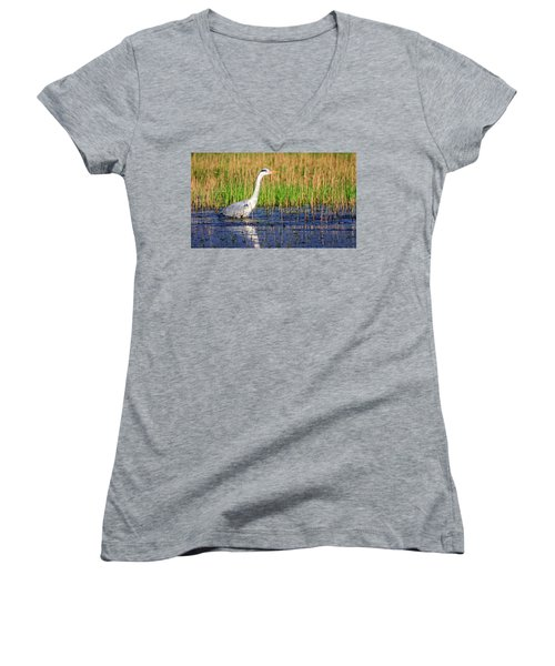 Grey Heron, Ardea Cinerea, In A Pond Women's V-Neck T-Shirt