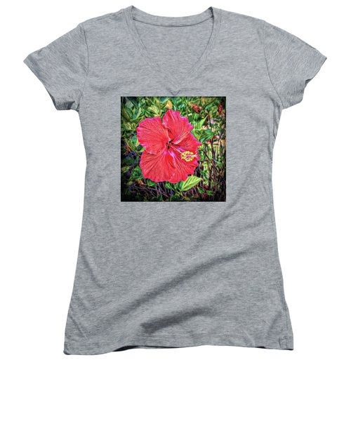 Women's V-Neck T-Shirt featuring the photograph Hibiscus Flower by Lewis Mann