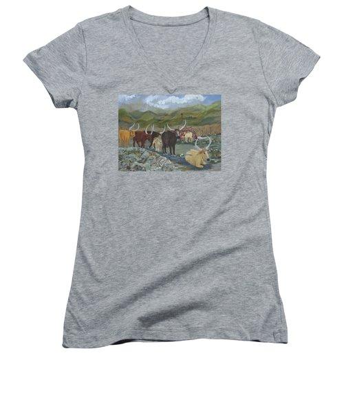 Home On The Range Women's V-Neck T-Shirt (Junior Cut)