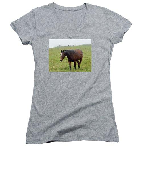 Horse In The Fog Women's V-Neck T-Shirt (Junior Cut) by Pamela Walton