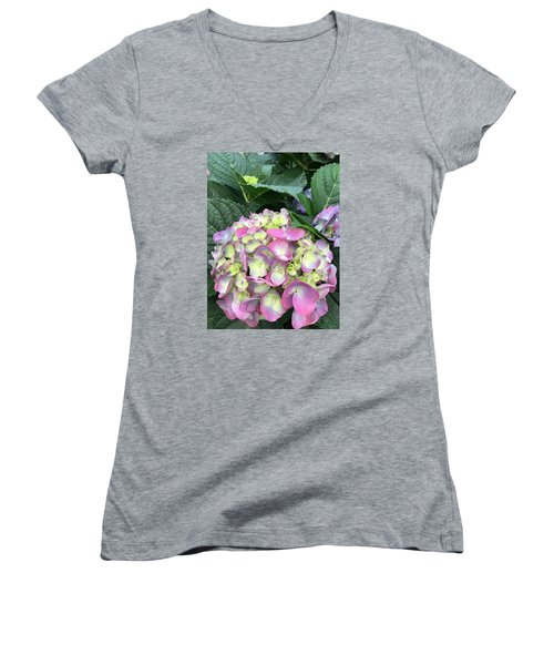 Hydrangea Women's V-Neck T-Shirt (Junior Cut) by Kay Gilley