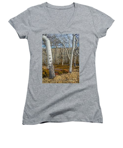Into The Trees Women's V-Neck (Athletic Fit)