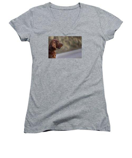 Irish Setter Women's V-Neck T-Shirt (Junior Cut) by Robert Krajnc