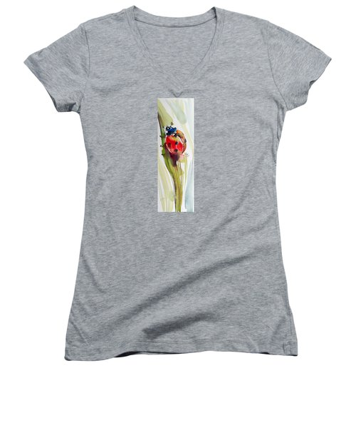 Ladybird Women's V-Neck T-Shirt (Junior Cut)