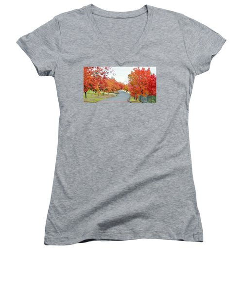 Women's V-Neck T-Shirt featuring the photograph Last Days Of Autumn by AJ Schibig