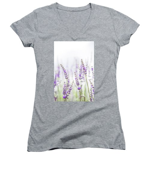 Lavender Flower In The Garden,park,backyard,meadow Blossom In Th Women's V-Neck T-Shirt (Junior Cut) by Jingjits Photography