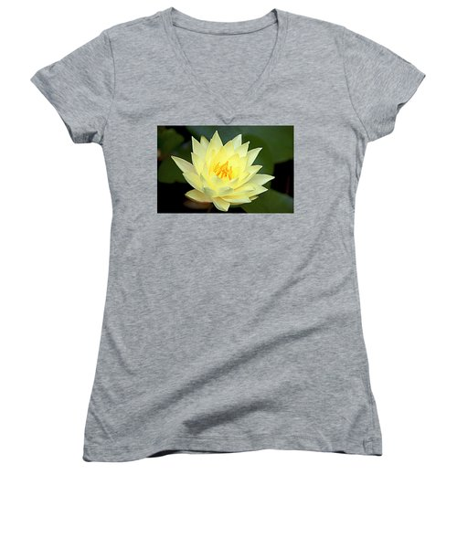 Lily Women's V-Neck T-Shirt (Junior Cut) by Jerry Cahill