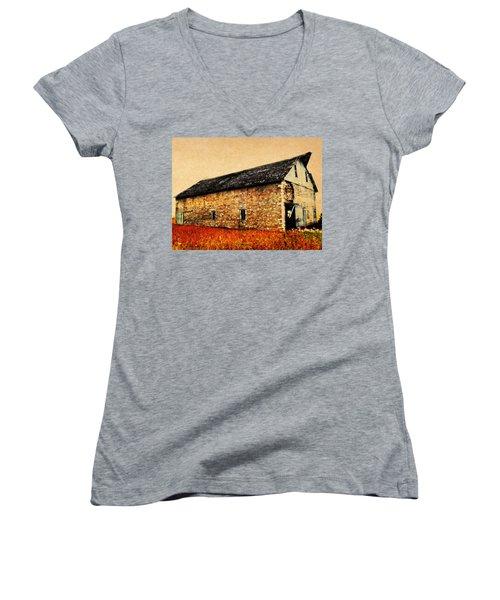 Lime Stone Barn Women's V-Neck T-Shirt