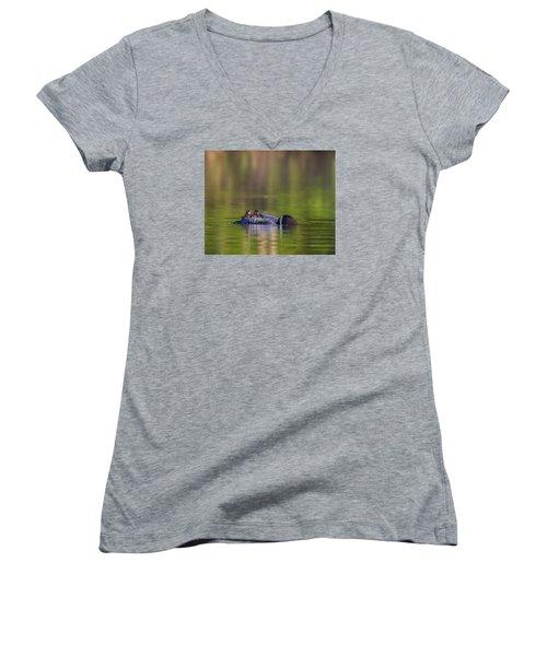Loon Chick Yawn Women's V-Neck T-Shirt (Junior Cut) by John Vose