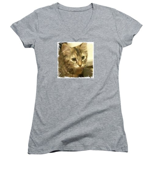 Ellie Kitty Women's V-Neck T-Shirt (Junior Cut) by Anna Porter