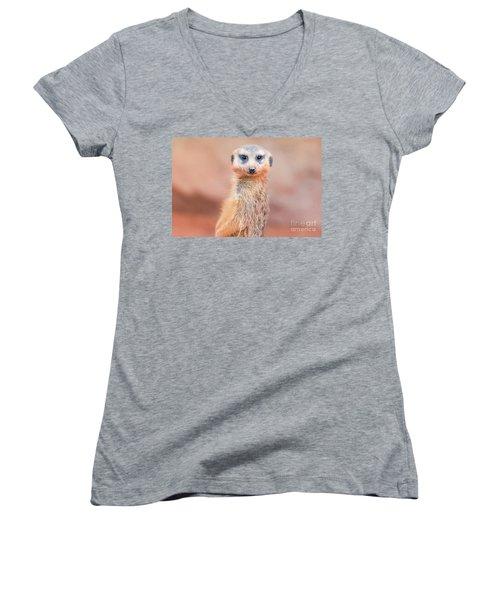 Meerkat Women's V-Neck T-Shirt (Junior Cut) by Stephanie Hayes