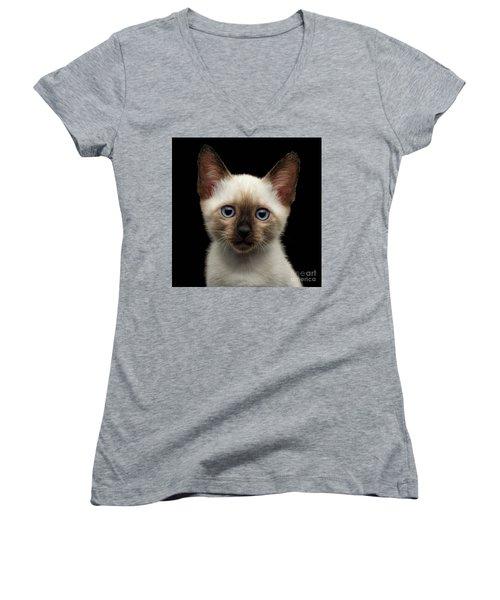Mekong Bobtail Kitty With Blue Eyes On Isolated Black Background Women's V-Neck T-Shirt (Junior Cut) by Sergey Taran