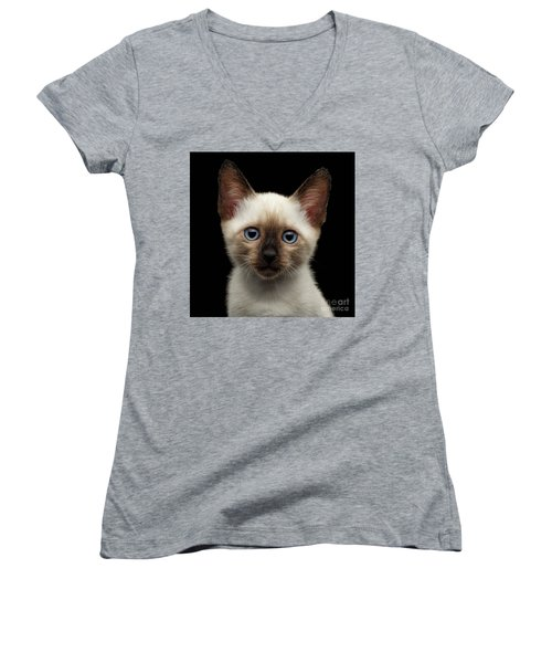 Mekong Bobtail Kitty With Blue Eyes On Isolated Black Background Women's V-Neck T-Shirt