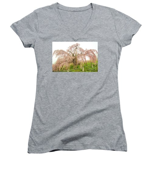 Women's V-Neck T-Shirt (Junior Cut) featuring the photograph Miharu Takizakura Weeping Cherry02 by Tatsuya Atarashi