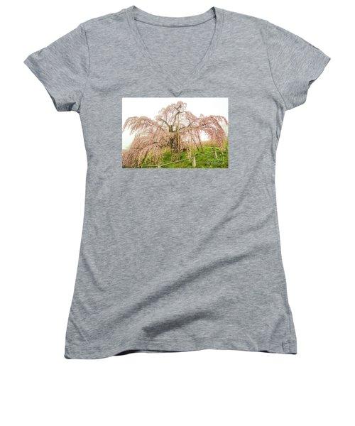 Miharu Takizakura Weeping Cherry02 Women's V-Neck T-Shirt