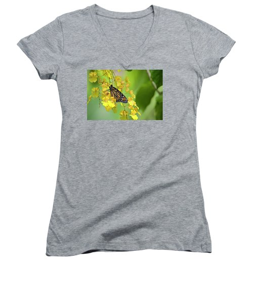Monarch Butterfly On Yellow Orchids Women's V-Neck