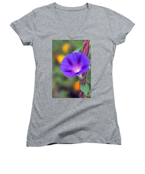 Women's V-Neck T-Shirt featuring the photograph Morning Glory by Vadim Levin
