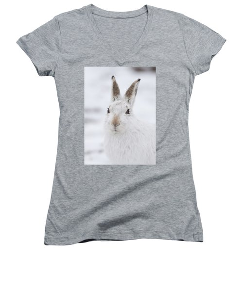 Mountain Hare In The Snow - Lepus Timidus  #1 Women's V-Neck