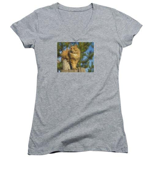 My Cat Women's V-Neck T-Shirt (Junior Cut) by Vladimir Kholostykh