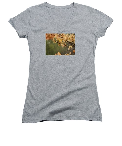 November Rain Women's V-Neck T-Shirt
