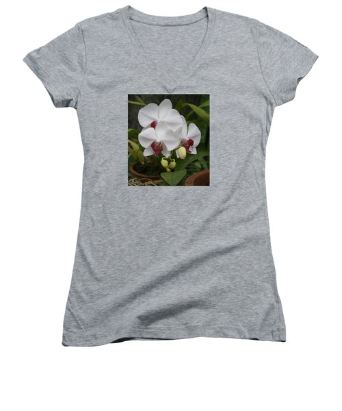 Women's V-Neck T-Shirt (Junior Cut) featuring the photograph Orchid by Christian Zesewitz