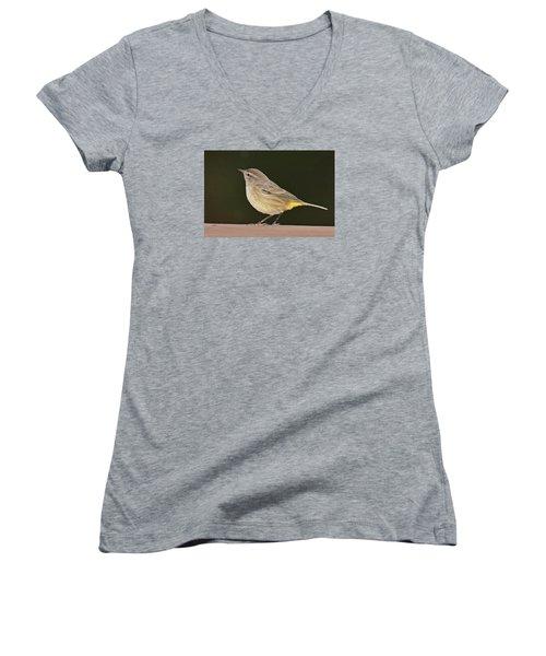 Palm Warbler Women's V-Neck T-Shirt (Junior Cut) by Alan Lenk