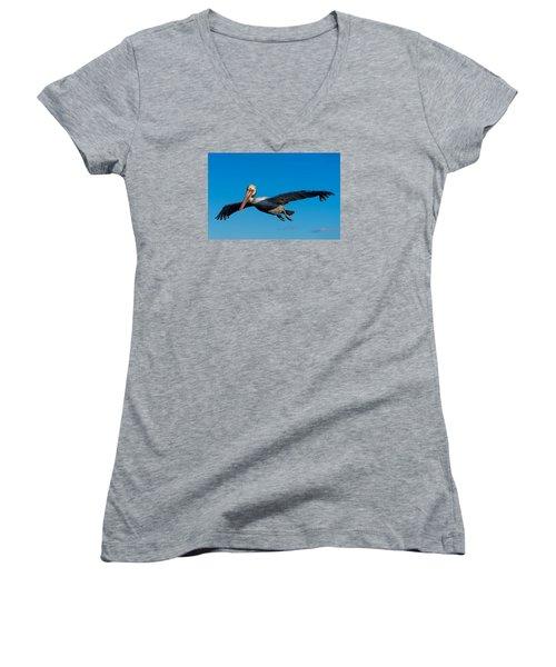 Pelican Women's V-Neck T-Shirt (Junior Cut) by Derek Dean