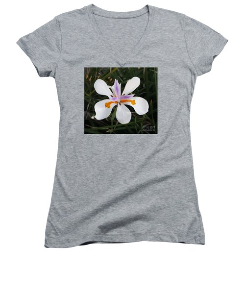 Perfection Of Nature Women's V-Neck T-Shirt (Junior Cut) by Jasna Gopic