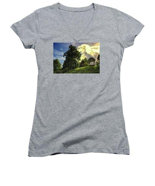 Petworth House Women's V-Neck T-Shirt (Junior Cut) by Martin Newman