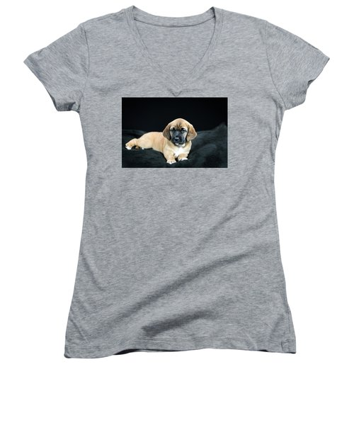Puppy Love Women's V-Neck (Athletic Fit)