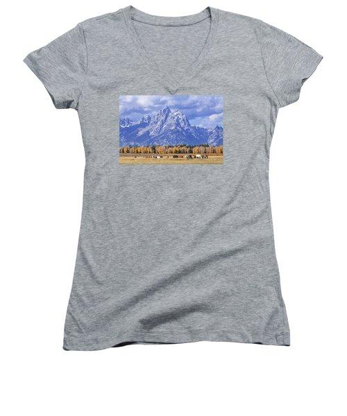 Purple Mountains Majesty Women's V-Neck T-Shirt