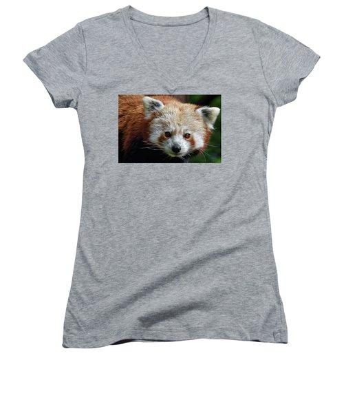 Red Panda Women's V-Neck