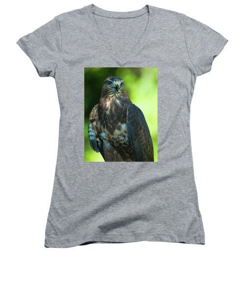 Red Tailed Hawk Women's V-Neck T-Shirt