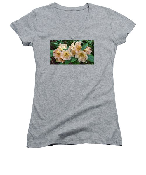 Rhododendron Women's V-Neck