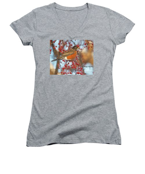 Women's V-Neck T-Shirt (Junior Cut) featuring the photograph Robin.. by Nina Stavlund