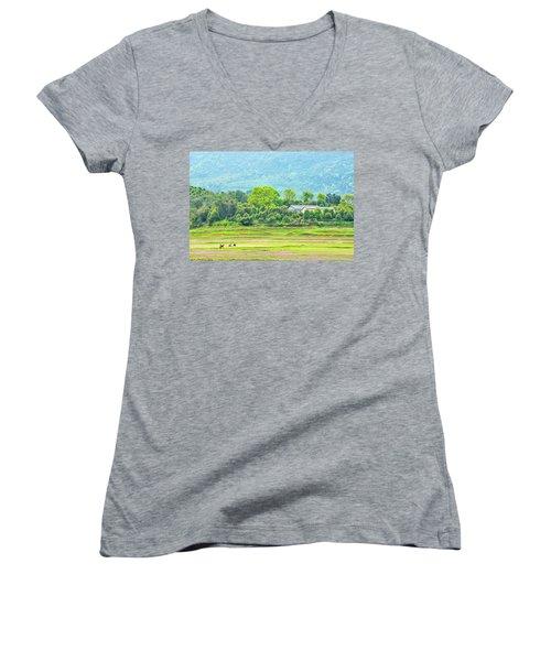 Rural Scenery In Spring Women's V-Neck (Athletic Fit)
