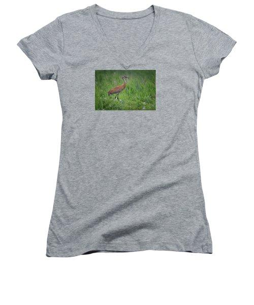Sandhill Crane Women's V-Neck T-Shirt (Junior Cut) by Gary Hall