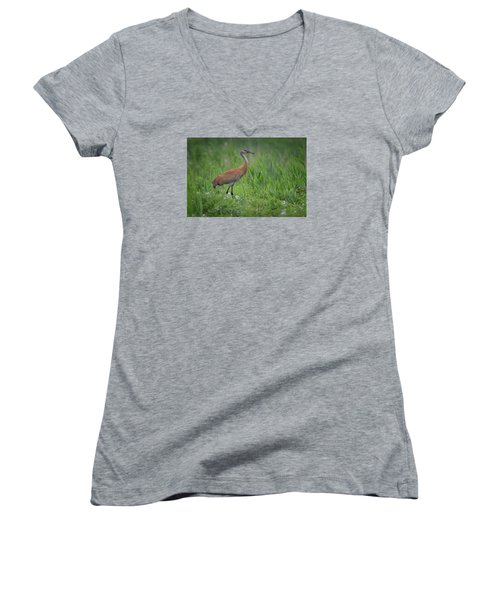 Sandhill Crane Women's V-Neck (Athletic Fit)