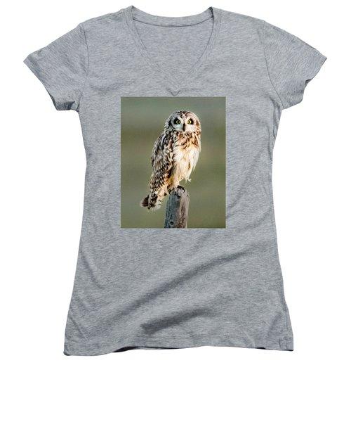 Short Eared Owl Women's V-Neck