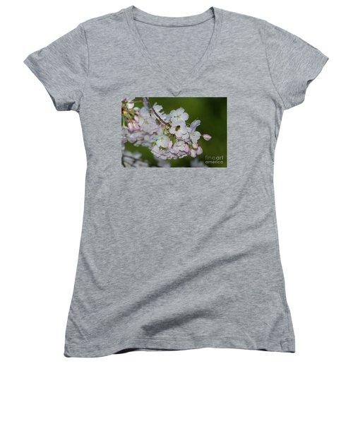 Silicon Valley Cherry Blossoms Women's V-Neck T-Shirt (Junior Cut) by Glenn Franco Simmons