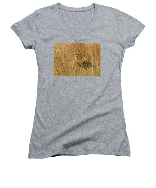 Silver Backed Jackal Women's V-Neck T-Shirt