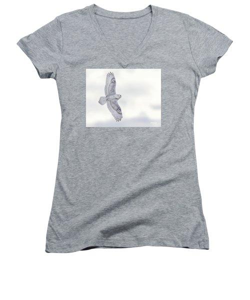 Snowy Flyby Women's V-Neck T-Shirt