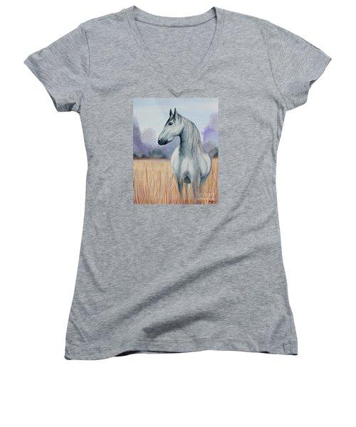Solemn Spirit Women's V-Neck T-Shirt