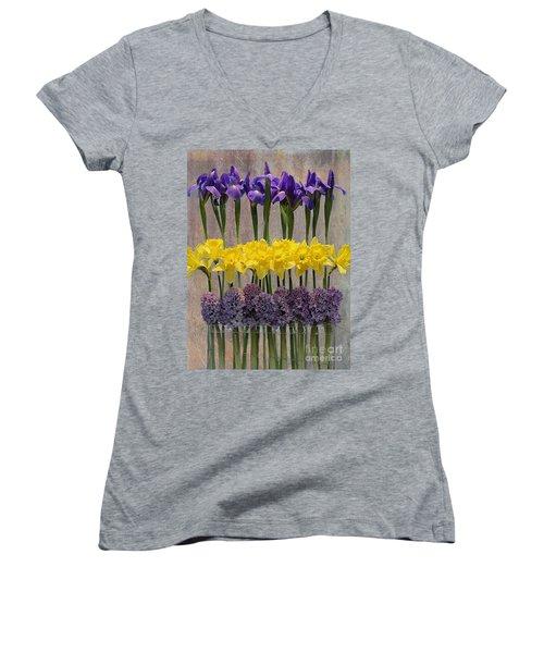 Spring Delights Women's V-Neck T-Shirt (Junior Cut) by Nina Silver