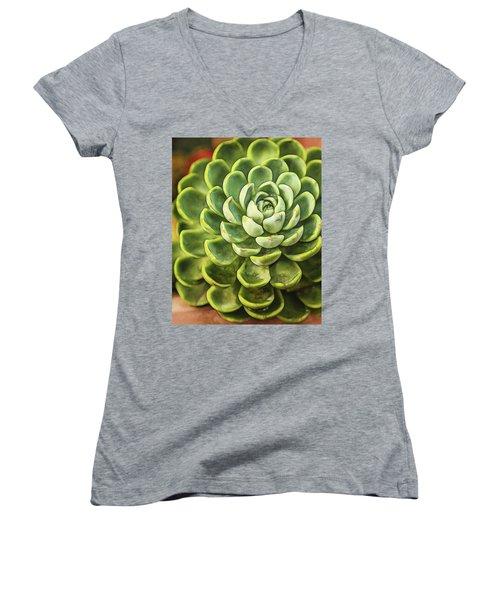Succulent Women's V-Neck